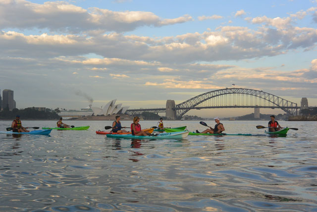 OzPaddle - Sydney Harbour Fitness Training