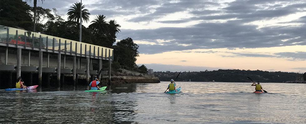 OzPaddle - Sydney Harbour Fitness Training