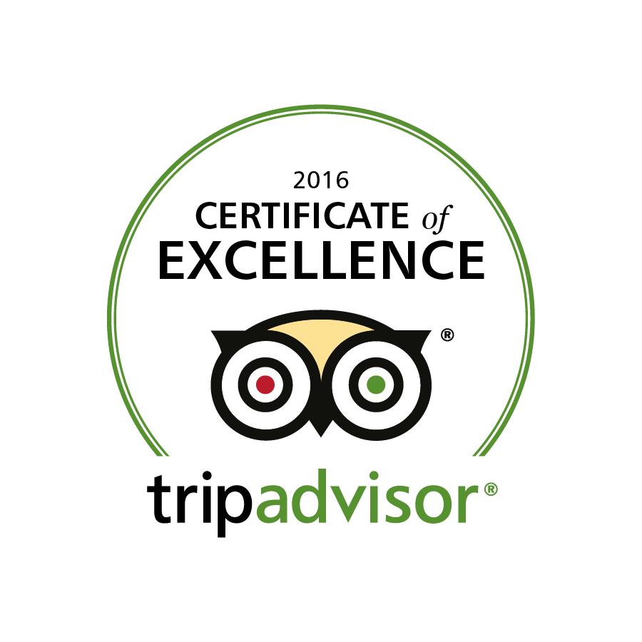 https://www.ozpaddle.com.au/wp-content/uploads/2016/06/tripadvisor-excellence.png